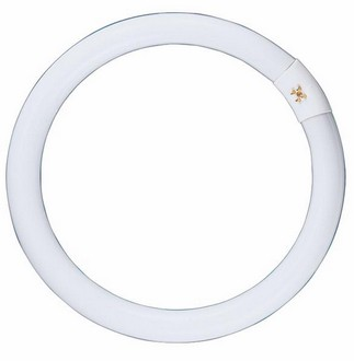 240V T9 22W Circular Fluorescent Bulb 8000 Hours CLA Lighting