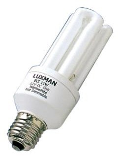 24V AC Globe Fluorescent Bulb 6000 Hours in Day Light CLA Lighting