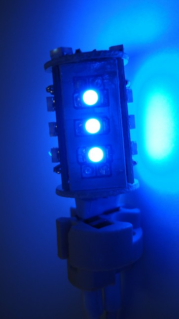LED Wall Sconce in Blue CLA Lighting
