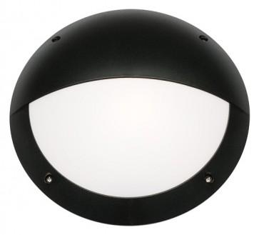 Torquay Eyelid Outdoor Wall Lantern in Black Cougar