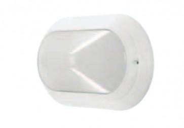 Oval Plain Wall Lighting Domus Lighting