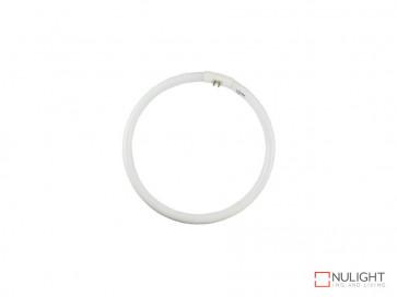 Vibe 32W T5 Cool White Circular Fluorescent VBL