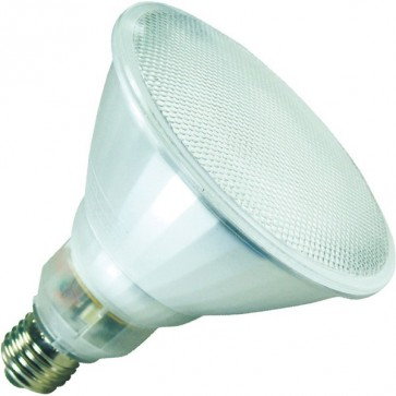 Energy Saving Lamp Compact Fluorescent Bulb Sunny Lighting