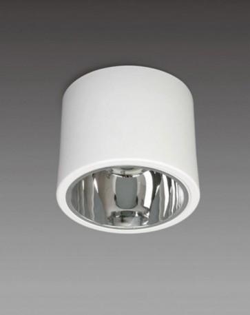 Kiama Surface Mounted Vertical Single PL Downlight Sunny Lighting