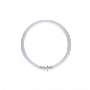 T5 Circular 40w 1672 Lamps