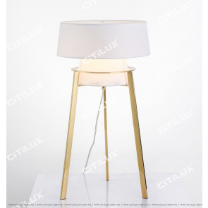 Modern Stainless Steel Simple Warm Table Lamp Citilux