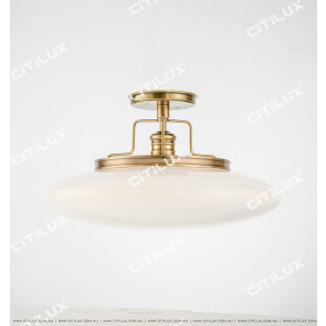 American Copper Single-Head Restaurant Leisure Chandelier Citilux