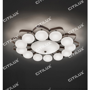 Molecular Combination Modern Ceiling Lamp Small Citilux