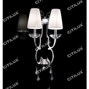 Simple European-Style Wire Cut Stainless Steel Double Head Wall Lamp Citilux