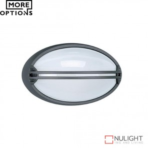 Airone Oval Guard 240V Wall Light E27 DOM