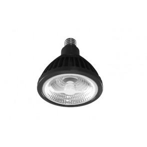 PR900 LED Bulb BrightGreen