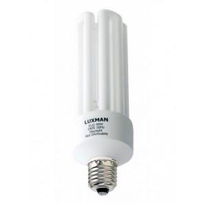 240V 30W BC Globe CFL 4U Fluorescent Bulb 12000 Hours CLA Lighting