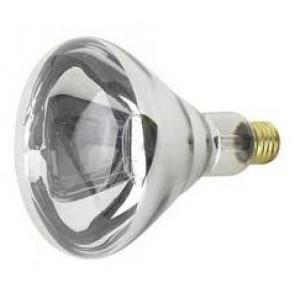 240V Heat Bulb CLA Lighting