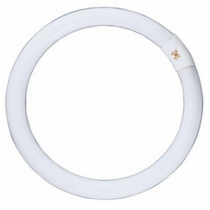 240V T9 40W Circular Fluorescent Bulb 8000 Hours CLA Lighting