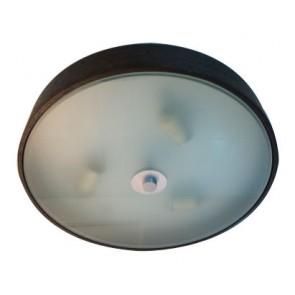 Primo 3 Light Oyster in Dark Wood Fiorentino Lighting