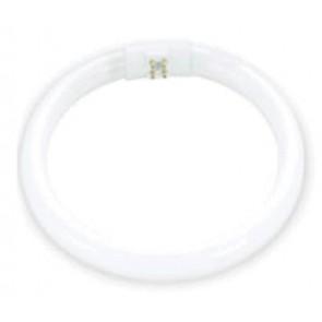 55 Watt Circular Tube High Output Tri Phos in Natural only Hermosa Lighting