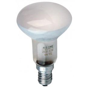 R50 40W Reflector Lamp Oriel