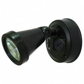 240V 100W Phoenix Spotlight Phonix