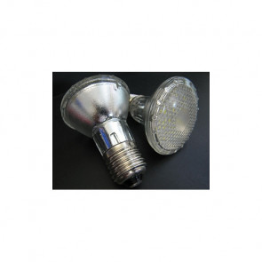LED 4W Replacement Globe for PAR20 Lights Prisma